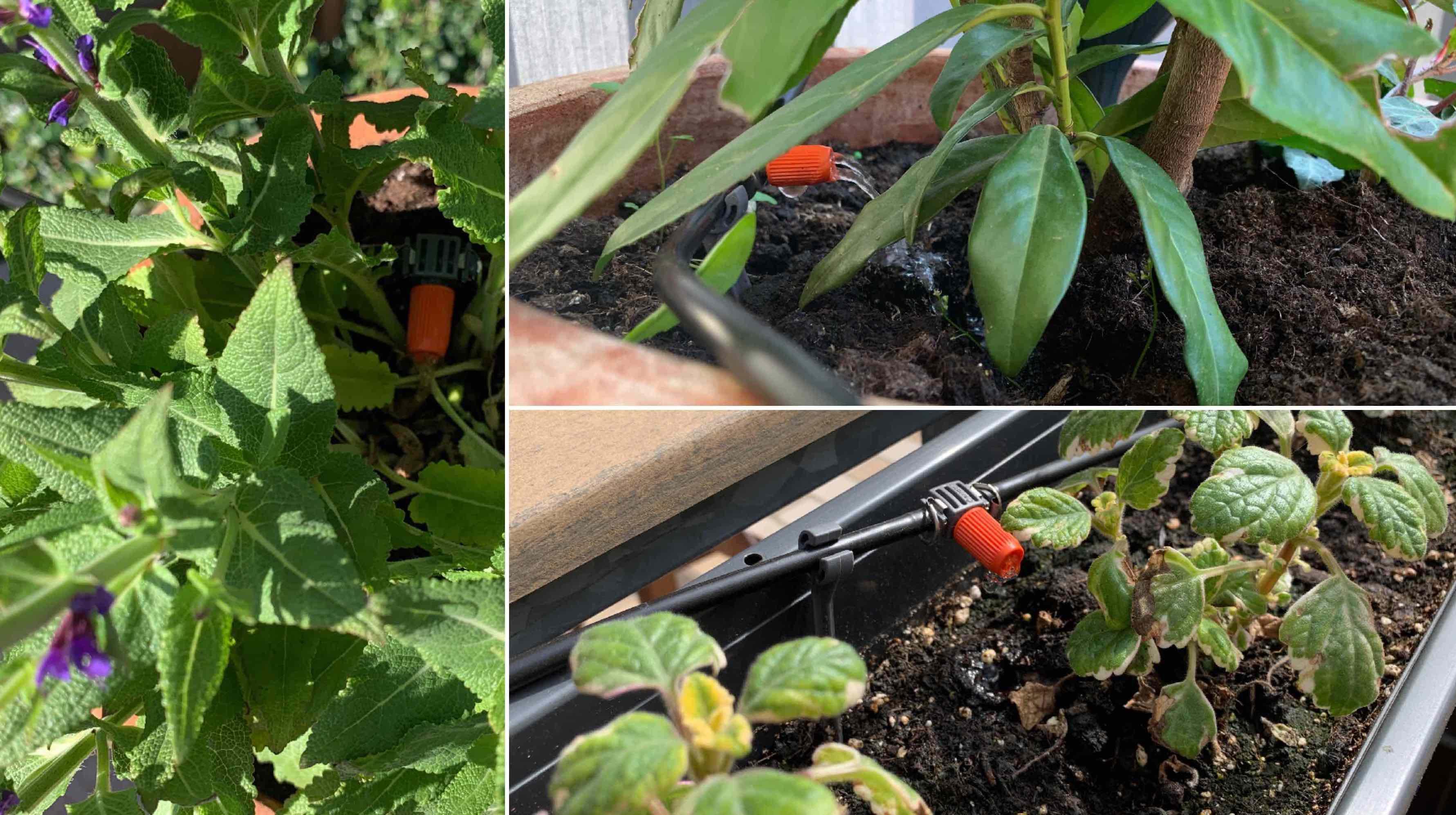 Eve_Aqua_HomeKit_Gardena_Terrasse_Balkon_Pflanzen_Bewässerung1 Wie HomeKit deine Pflanzen auf Balkon/Terrasse automatisiert bewässert