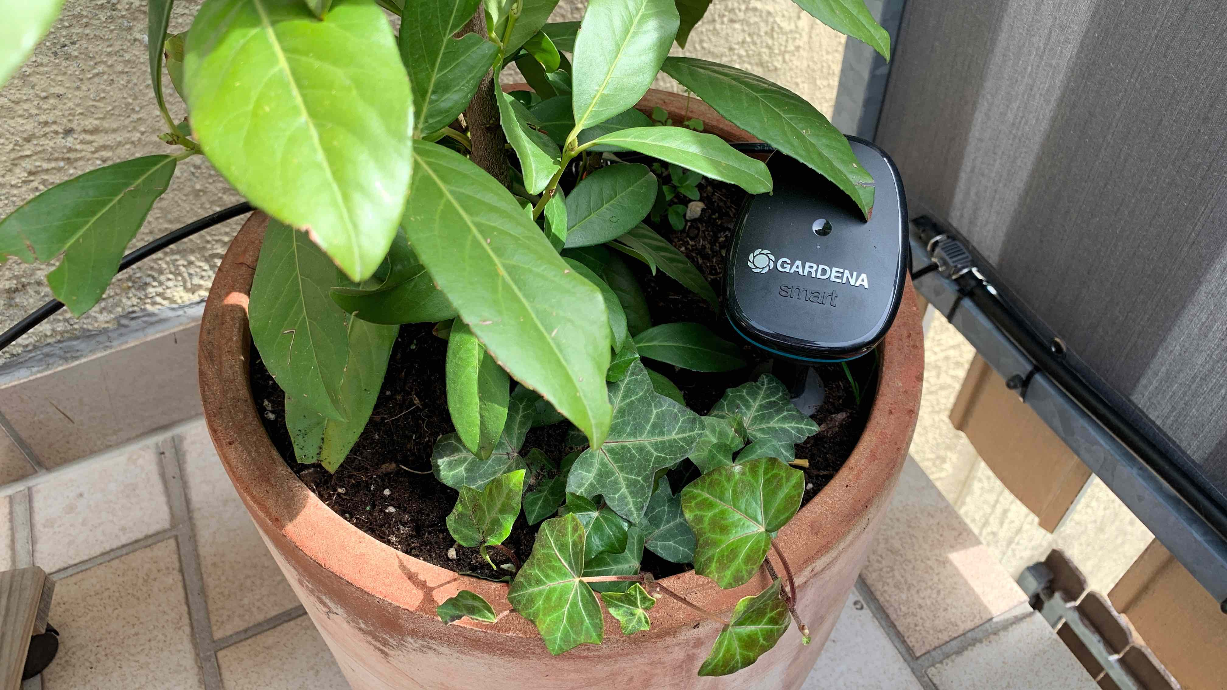 Eve_Aqua_HomeKit_Gardena_Terrasse_Balkon_Pflanzen_Bewässerung5 Wie HomeKit deine Pflanzen auf Balkon/Terrasse automatisiert bewässert