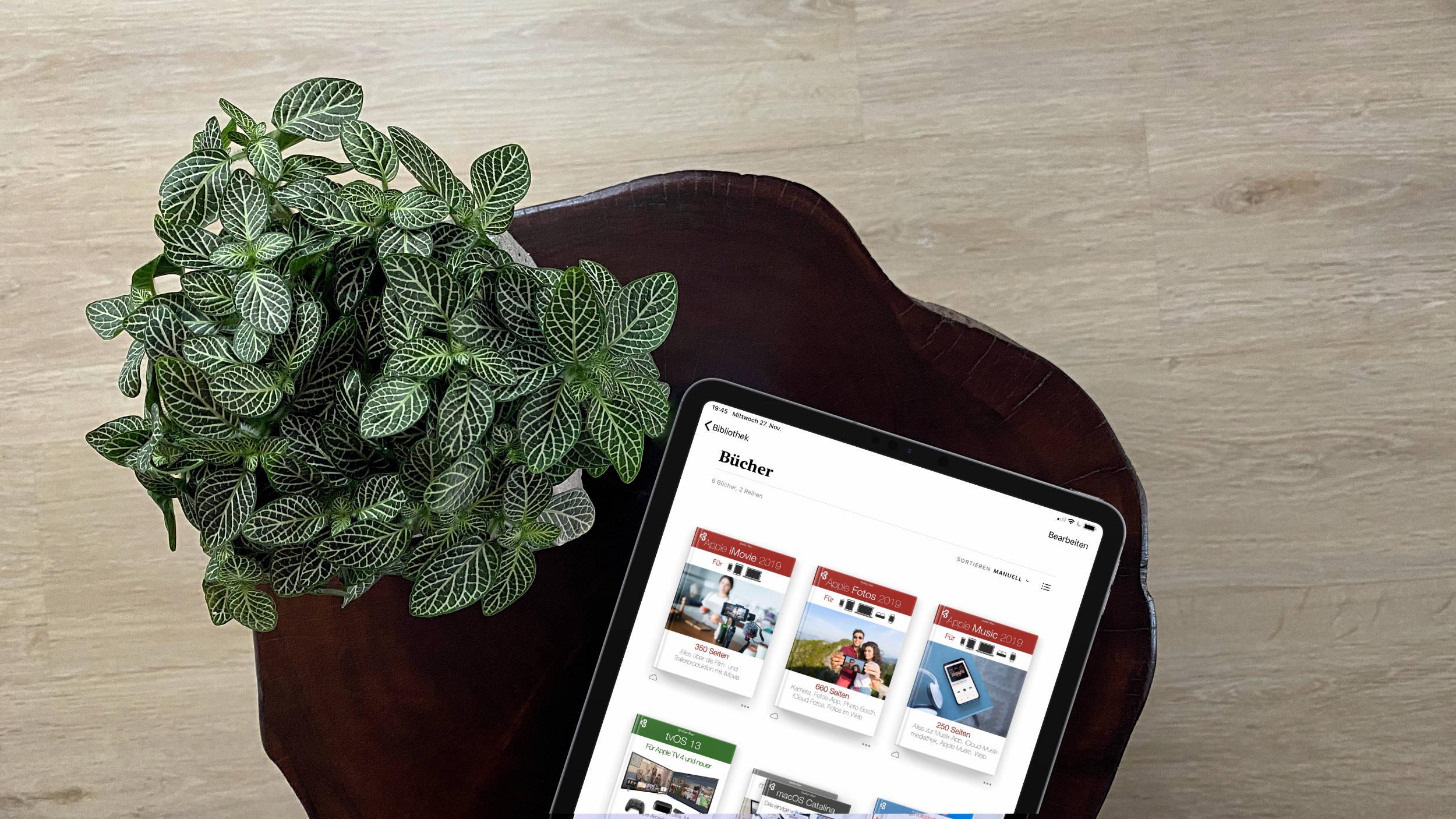 Fachbücher_Apple_Music_Fotos_iMovie_iPad_Bücher_Steffen_Bien Hilfe mit Fachbüchern zu Apple Music, Fotos und iMovie
