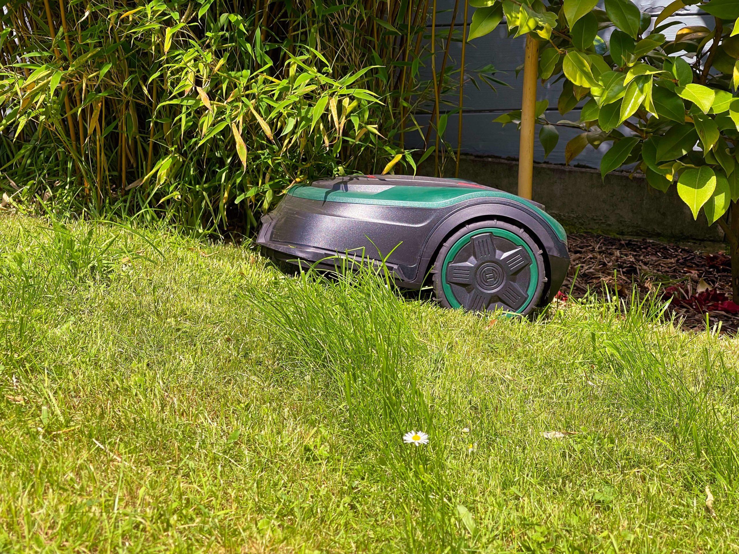 Indego-S-500-Rasenmaeherroboter-von-Bosch-smart-zur-besten-Rasenguete9-scaled Indego S+ 500 Rasenmähroboter von Bosch - Smart zur besten Rasengüte